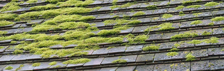 couverture et toiture ardoise pas cher en Provence-Alpes-Côte d'Azur