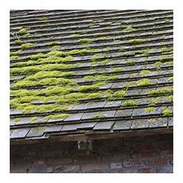devis couverture et toiture ardoise Charenton-le-Pont